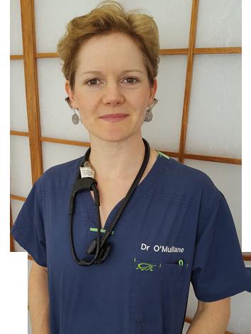 Dr Phebe O'Mullane